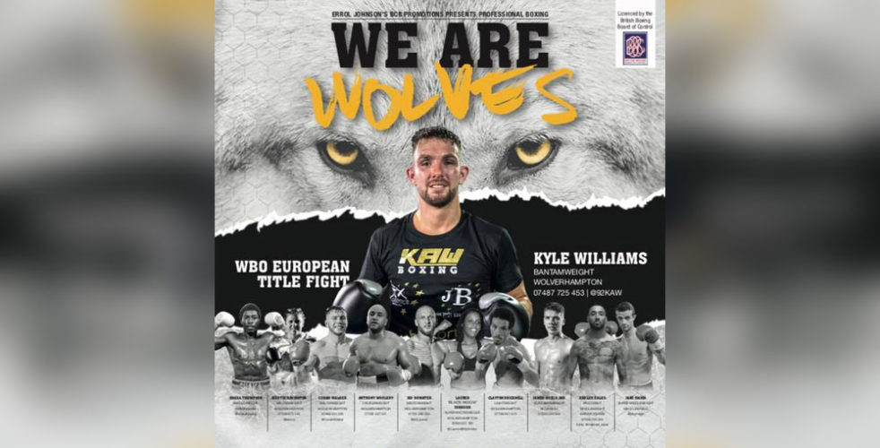 we are wolves boxing